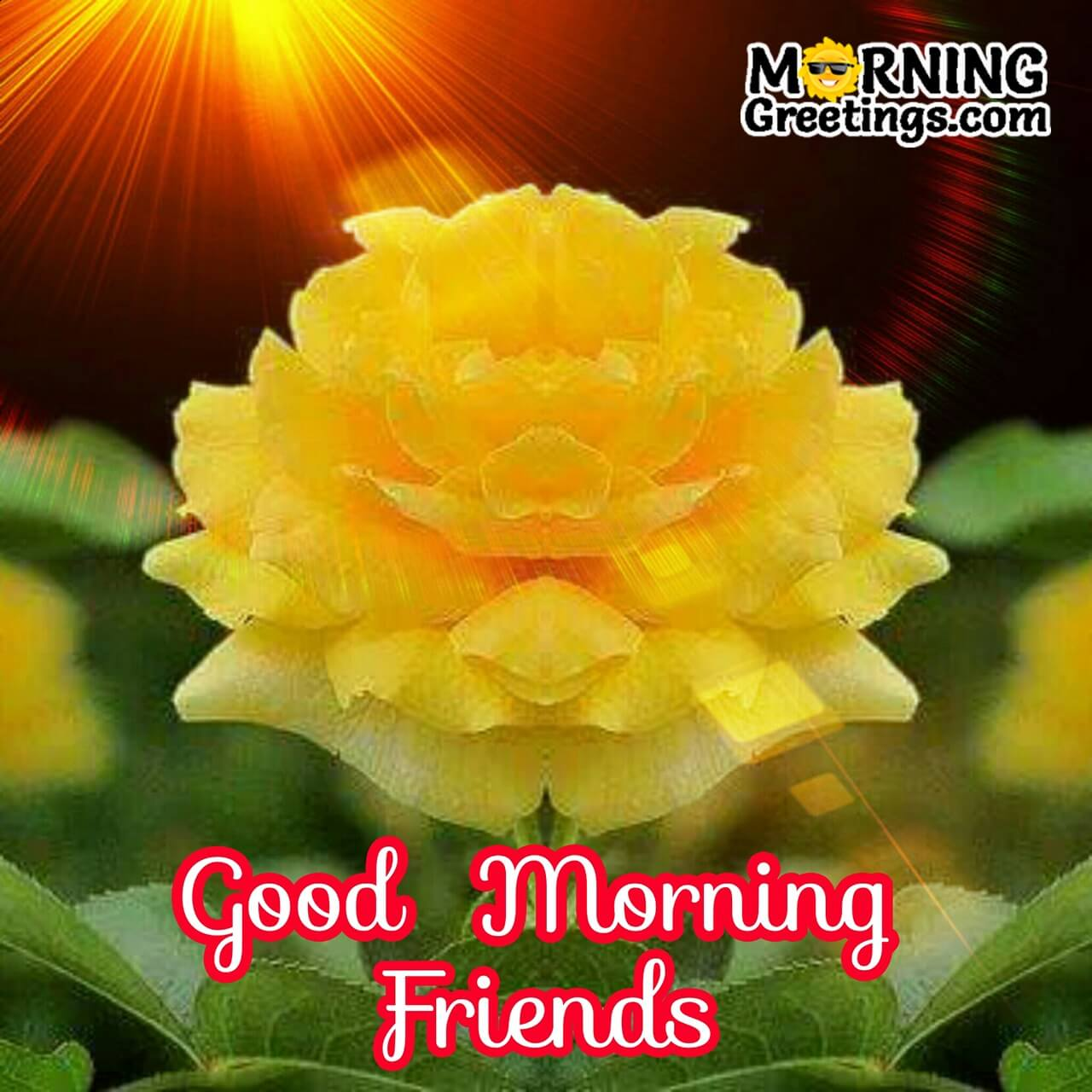 10 Great Good Morning Wishes For Friend Morning Greetings