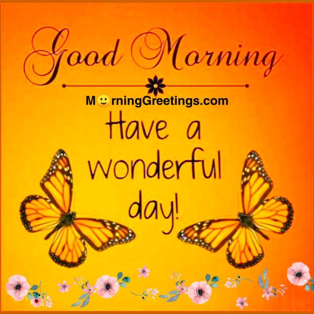 Image result for have a wonderful day images