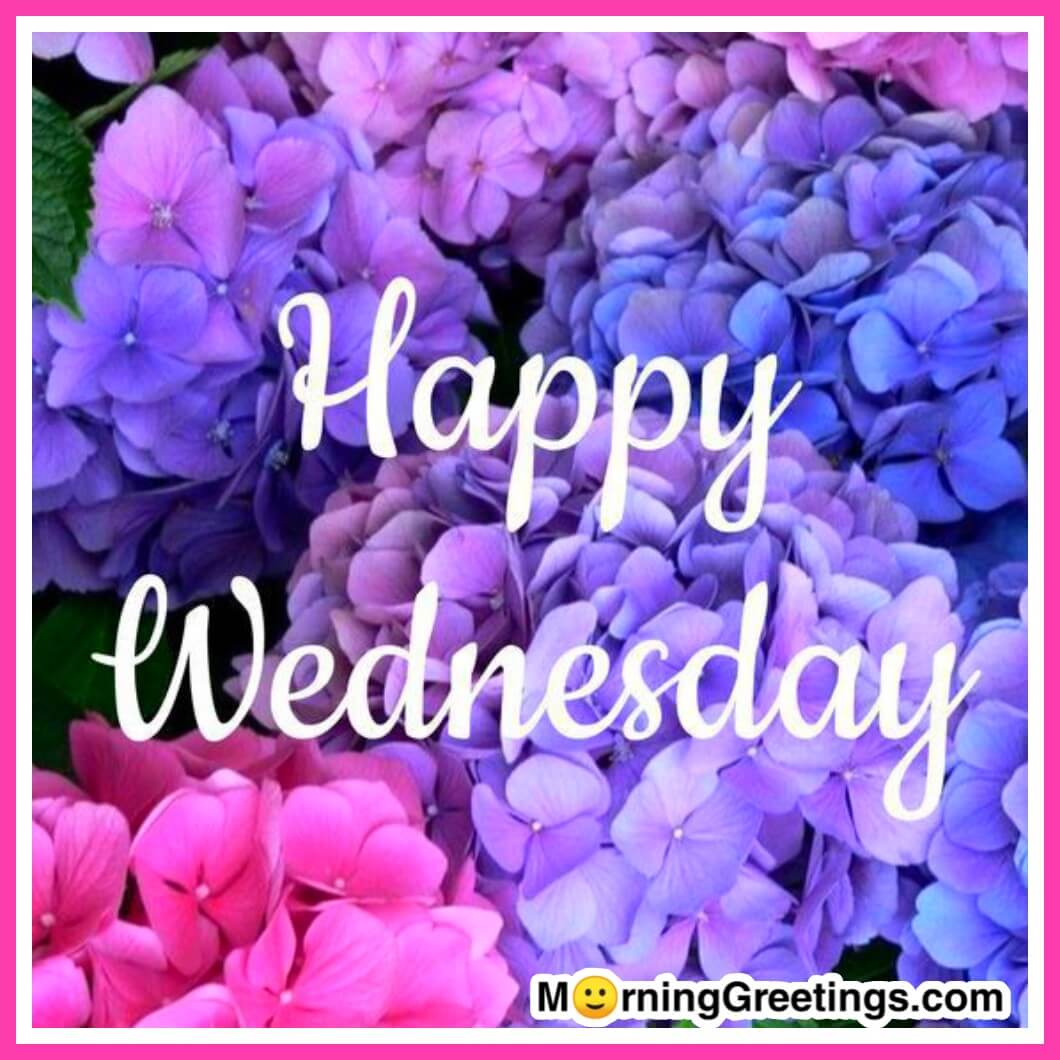 Happy Wednesday Greetings, Quotes, SMS & Text 2016 ...