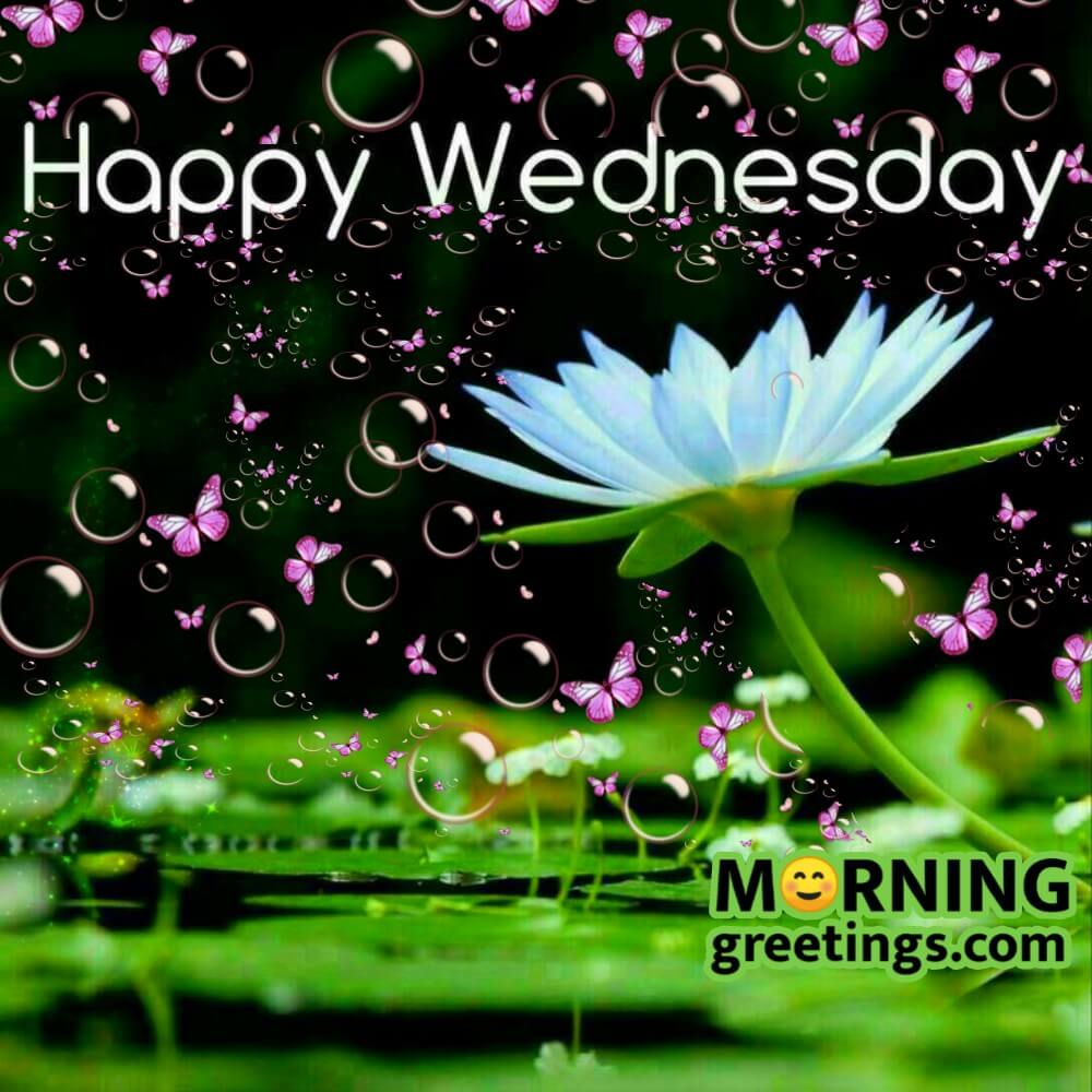 874 best Wednesday Blessings/Greetings images on Pinterest ...