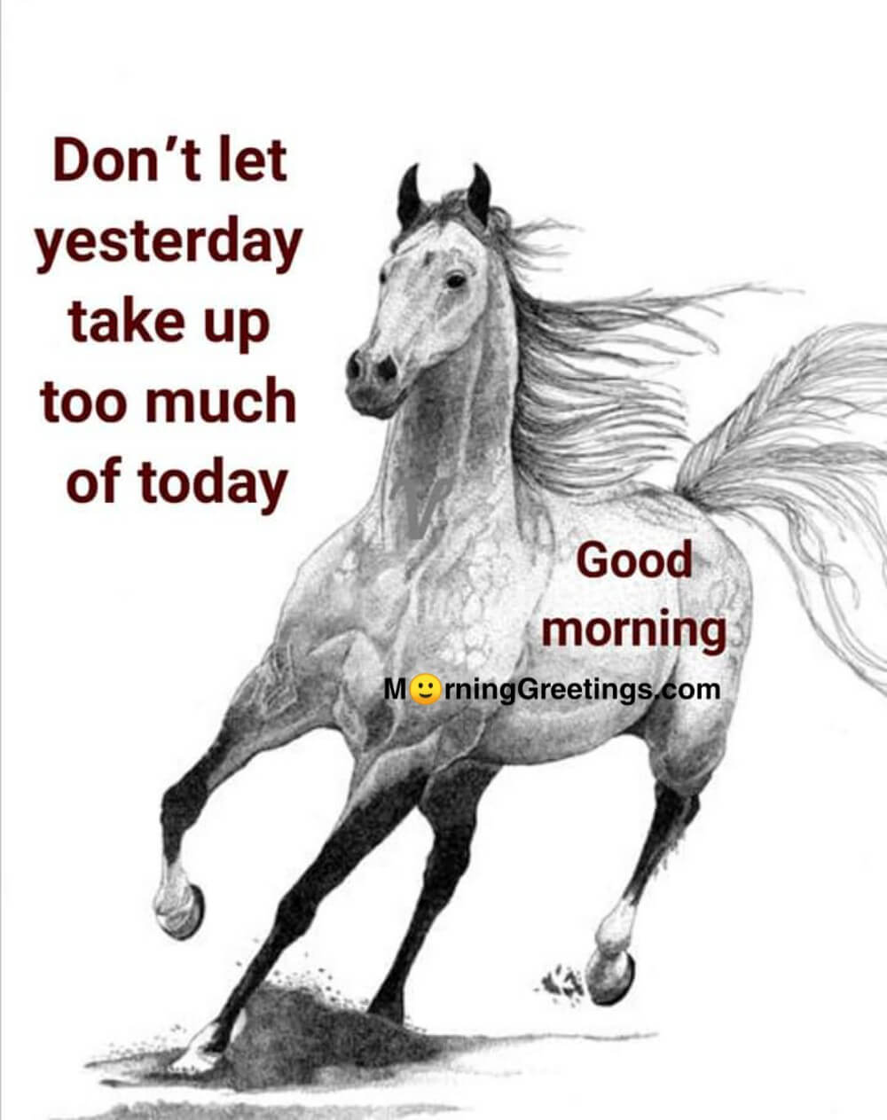 9 Awesome Don T Quotes Pictures Morning Greetings Morning Quotes And Wishes Images