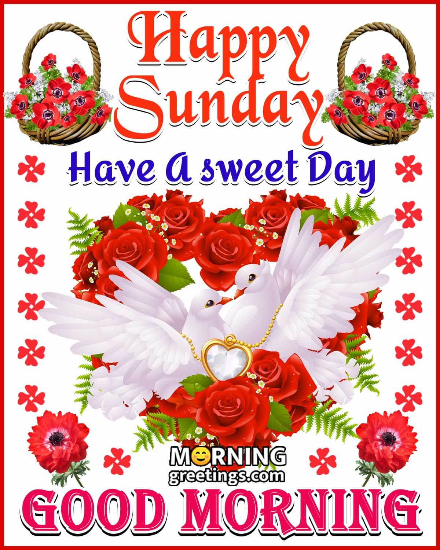 20 Good Morning Happy Sunday Images   Morning Greetings – Morning ...