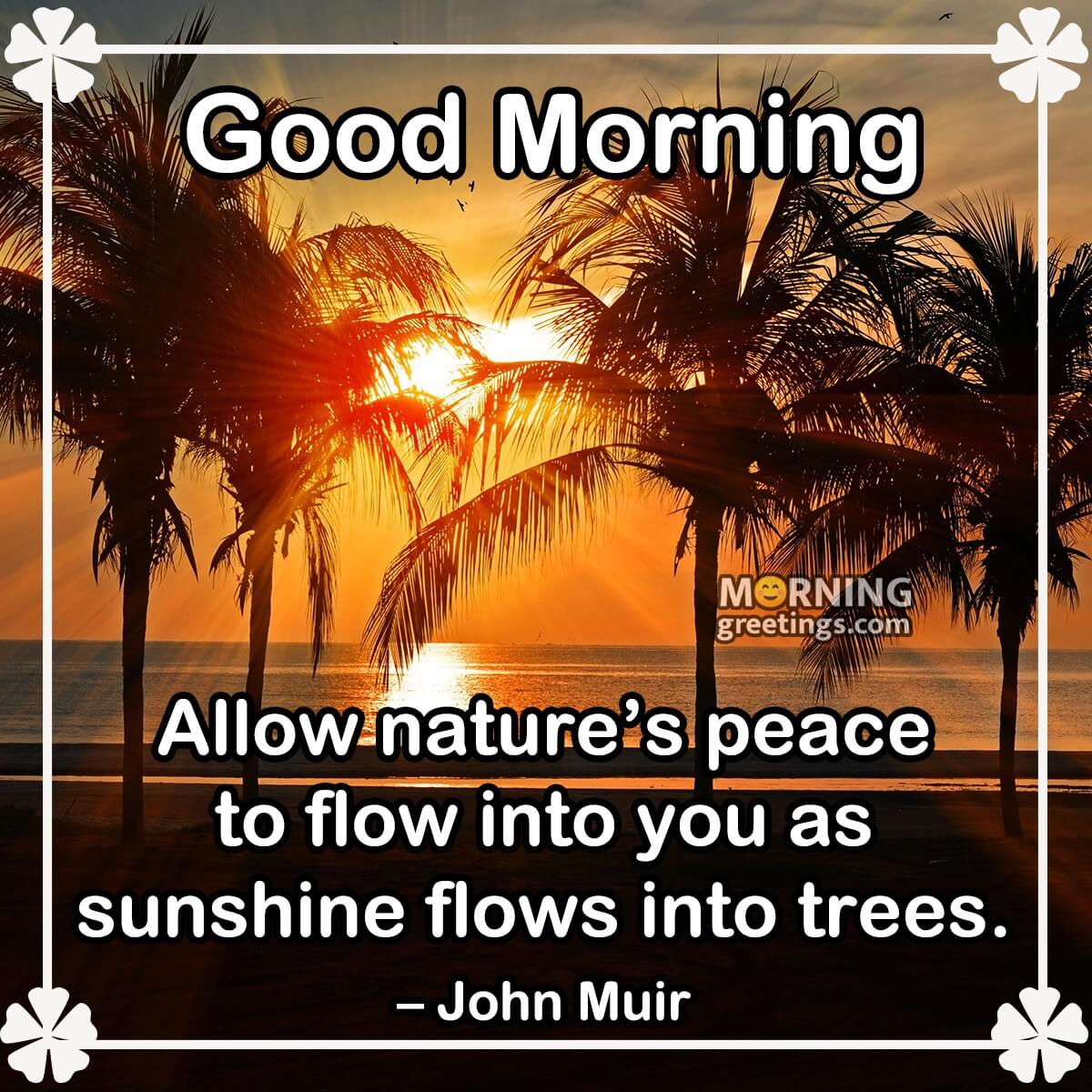 Quotes morning excellent good Good Morning