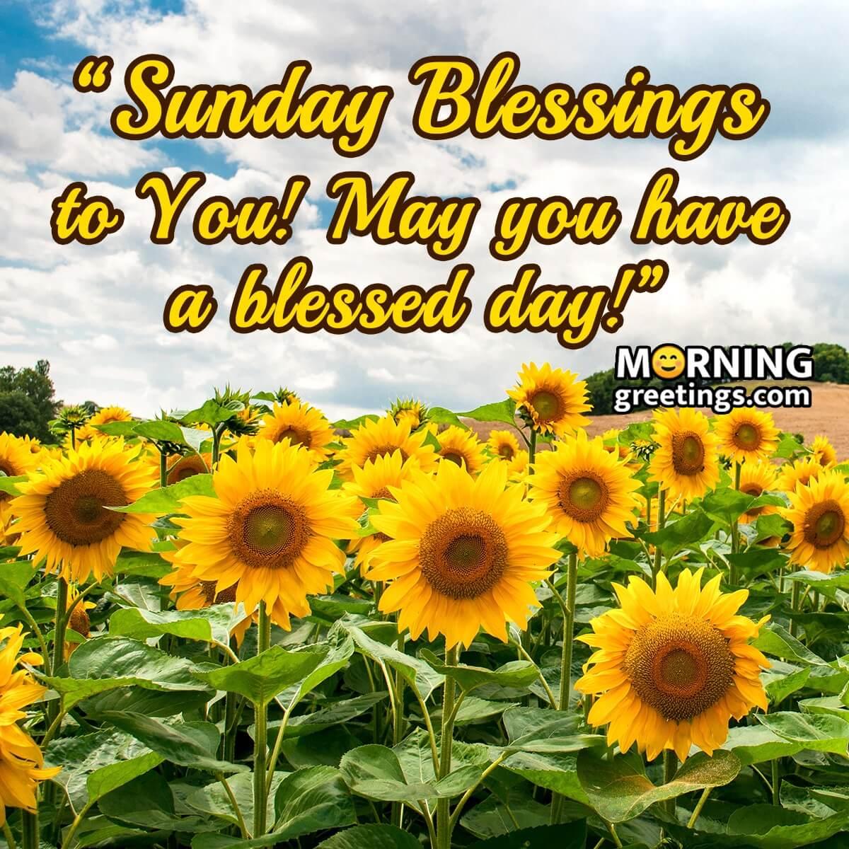 20 Super Sunday Morning Blessings   Morning Greetings – Morning ...